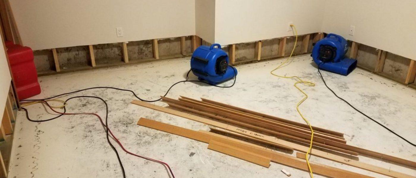 basement-water-damage-1024x768